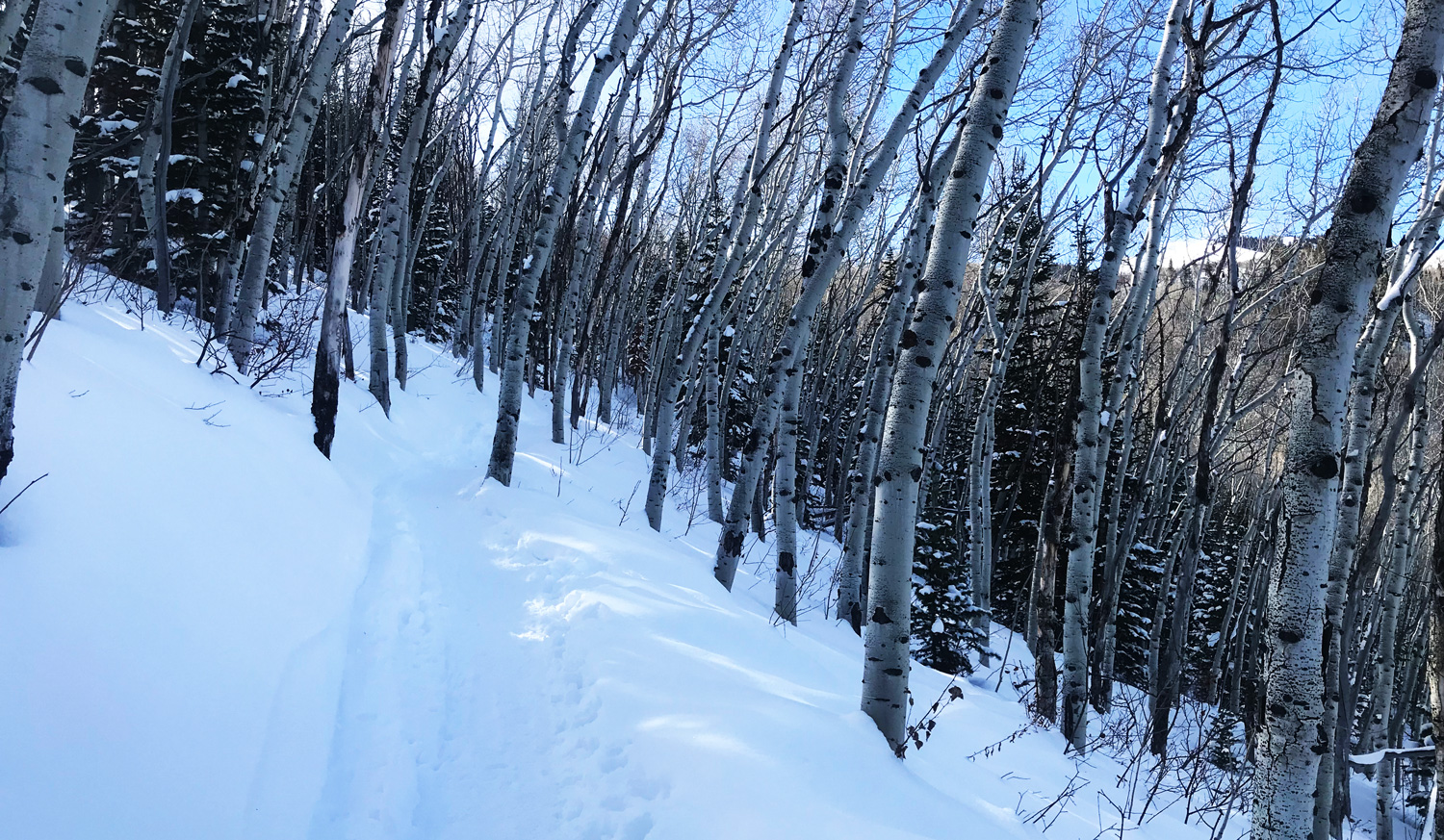 Winter Hiking in Park City, Utah